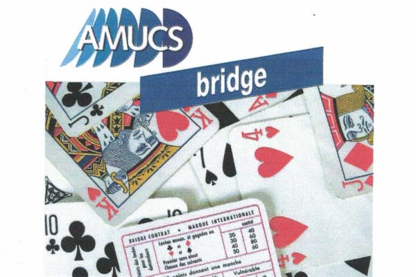 Bridge Amucs