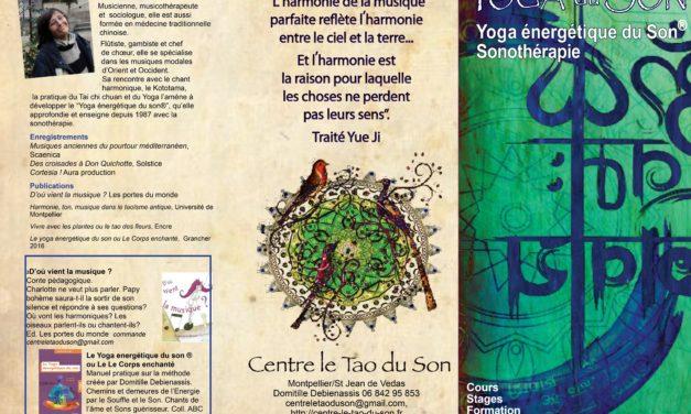 Ce Samedi 11 et Dimanche 12 Novembre Stage Centre le Tao du Son, Initiation pour Tous au 6, Place du nombre d or –