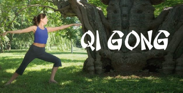 Stage Qi Gong 12 janvier 2020